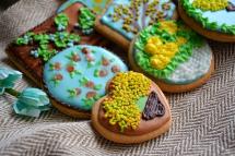 Печенье в дегидраторе RMD-07
