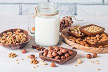 Ореховое молоко в планетарном миксере RAWMID Luxury RLM-05